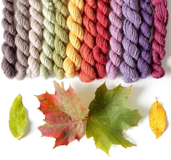 """Bild für Beitrag """"Herbstfarben"""" 2"""