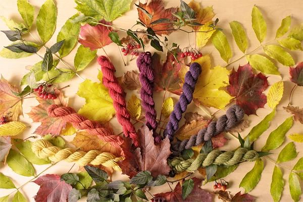 """Bild für Beitrag """"Herbstfarben"""" 8"""