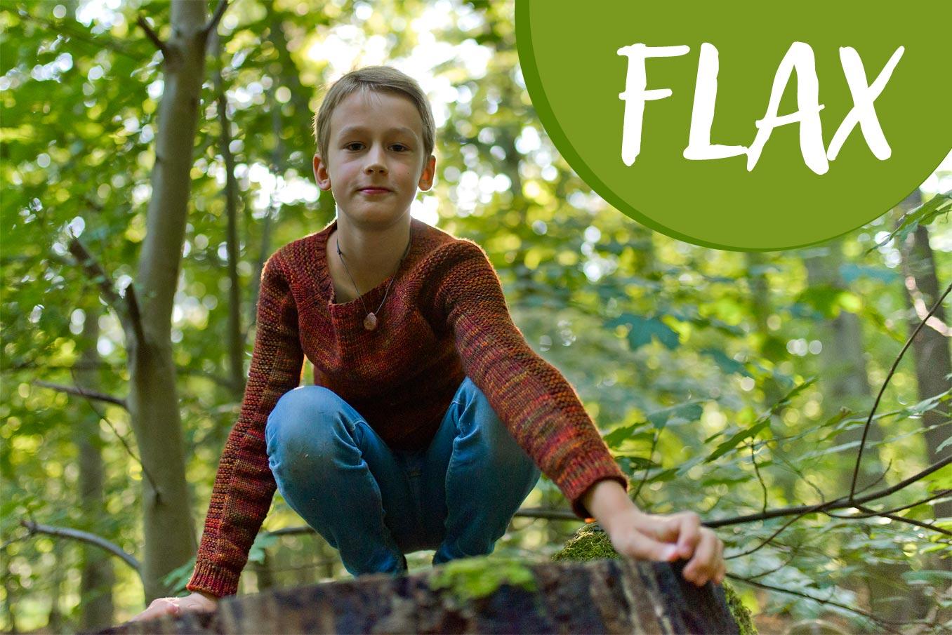 """Bild für Beitrag """"Flax"""" 1"""