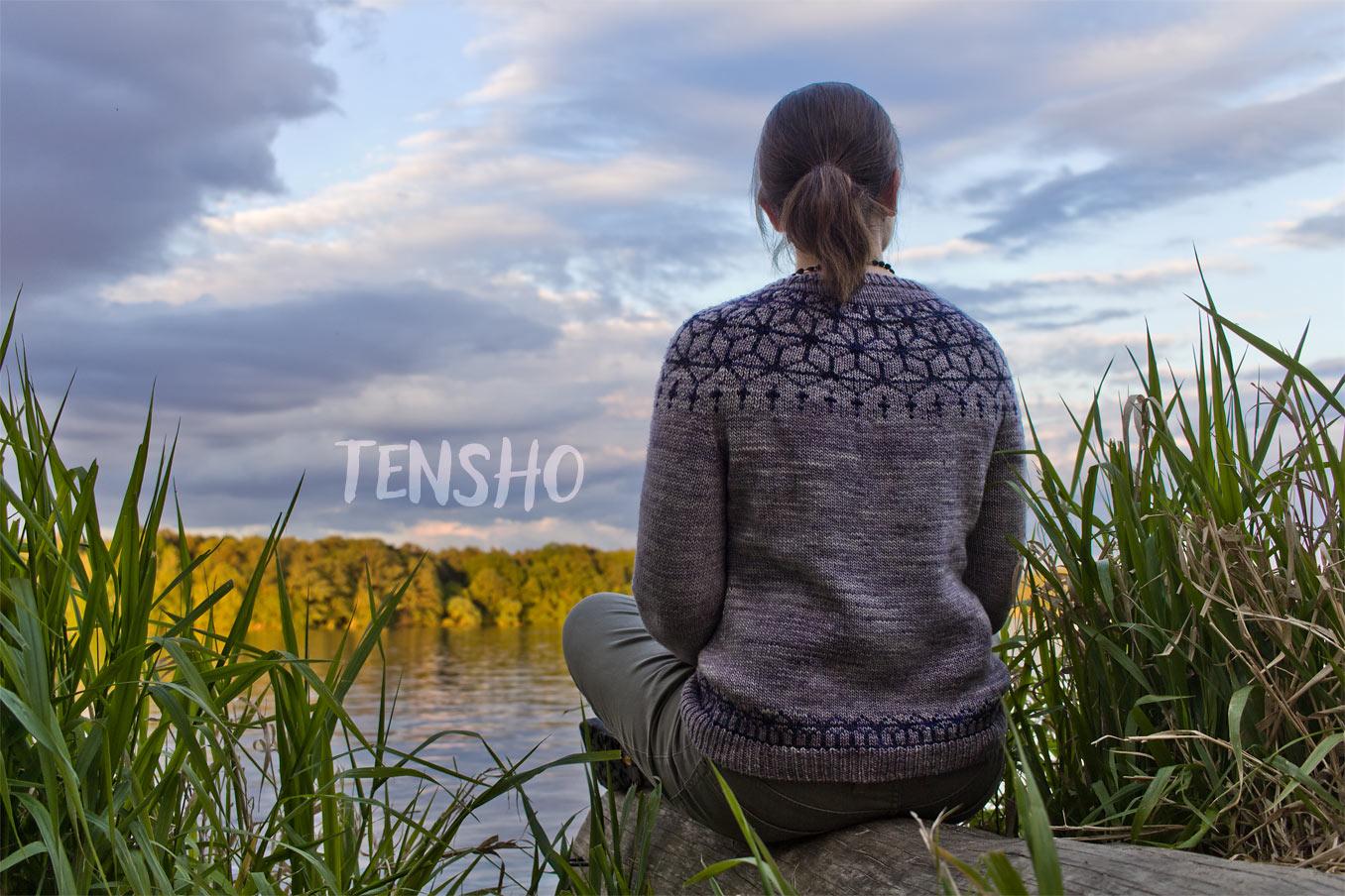 """Bild für Beitrag """"Tenso"""" 1"""