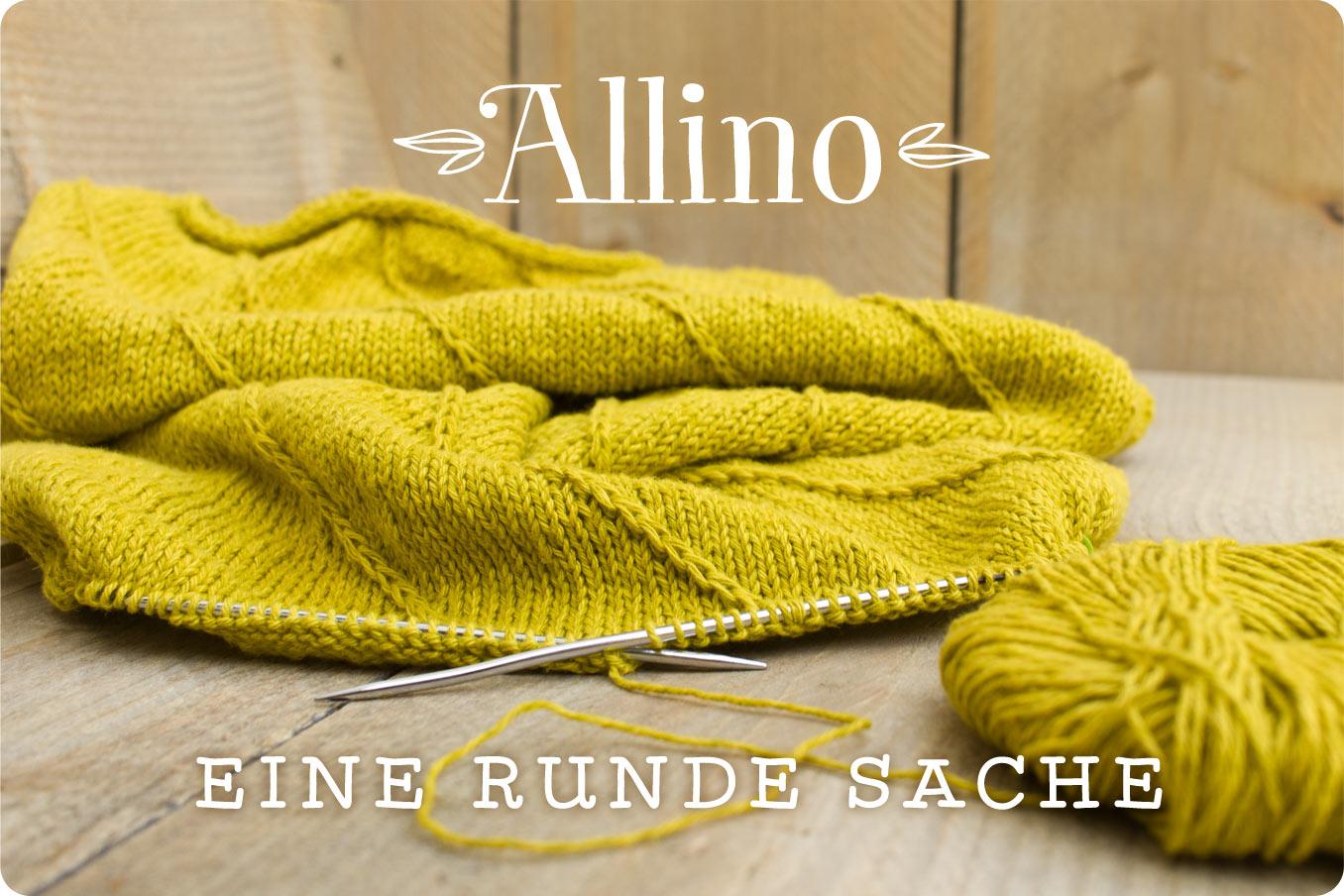 """Bild für Beitrag """"Allino"""" 1"""