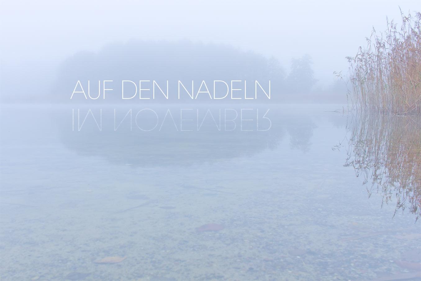 """Bild für Beitrag """"November"""" 1"""